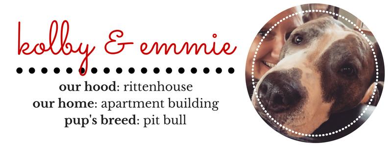 owning a pitbull in philadelphia